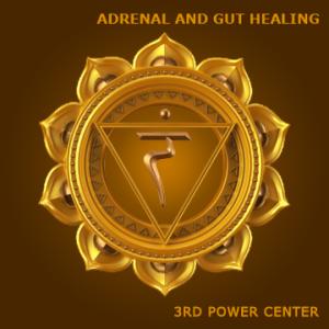 Adrenal-and-Gut-Healing